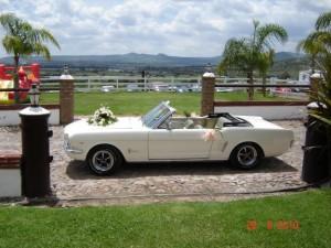 renta de auto para bodas, celebraciones, xv a�os. convertibles