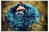 Fotografia profesional para novios, matrimonios, quinceaños. Monterrey